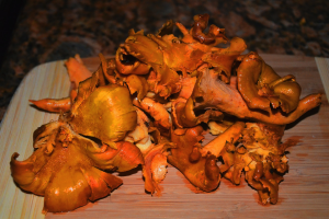 anacates2 300x200 - Anacate (Wild Golden Chanterelle) with provençal sauce
