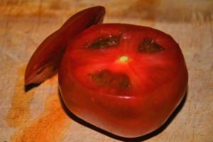 Tomates Manzanos con Queso de Chancol 2 mundochapin 300x200 - Tomatoes with Chancol® Cheese